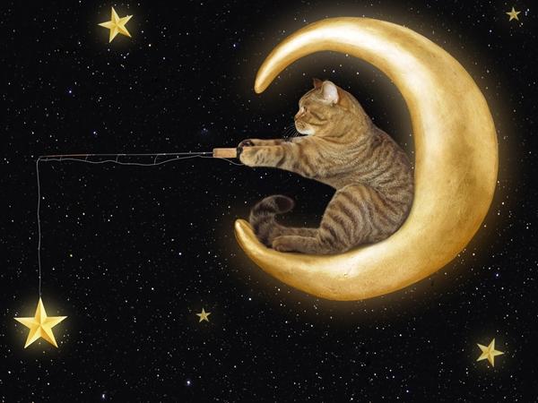 تفسير رؤية القمر في المنام للعزباء نواعم