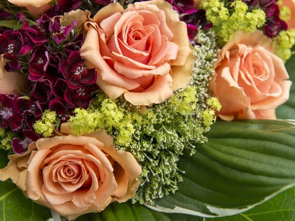 الورد في المنام للعزباء نواعم
