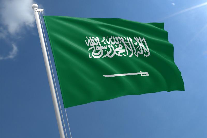 افضل ما قاله الشعراء عن المملكة العربية السعودية نواعم