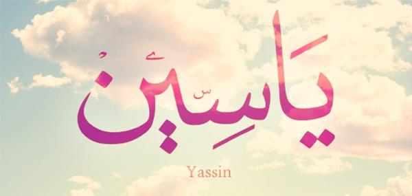 معنى اسم ياسين نواعم