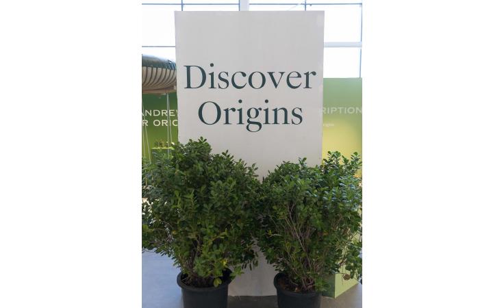 خاصّ: نواعم تحضر حدث إطلاق Origins في دبي وتتعرّف إلى مستحضراتها