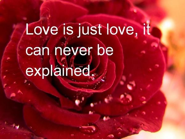 رسائل حب بالانجليزي مترجمة صور رسائل حب بالانجليزية صور حب