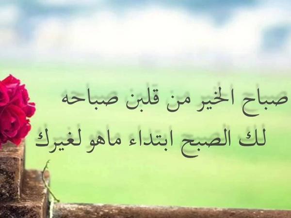 صباح الحب حبيبتي نواعم