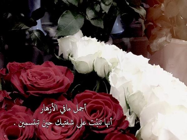 صباح الحب تويتر نواعم