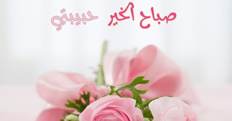 صباح الخير غاليه غاليتي 12